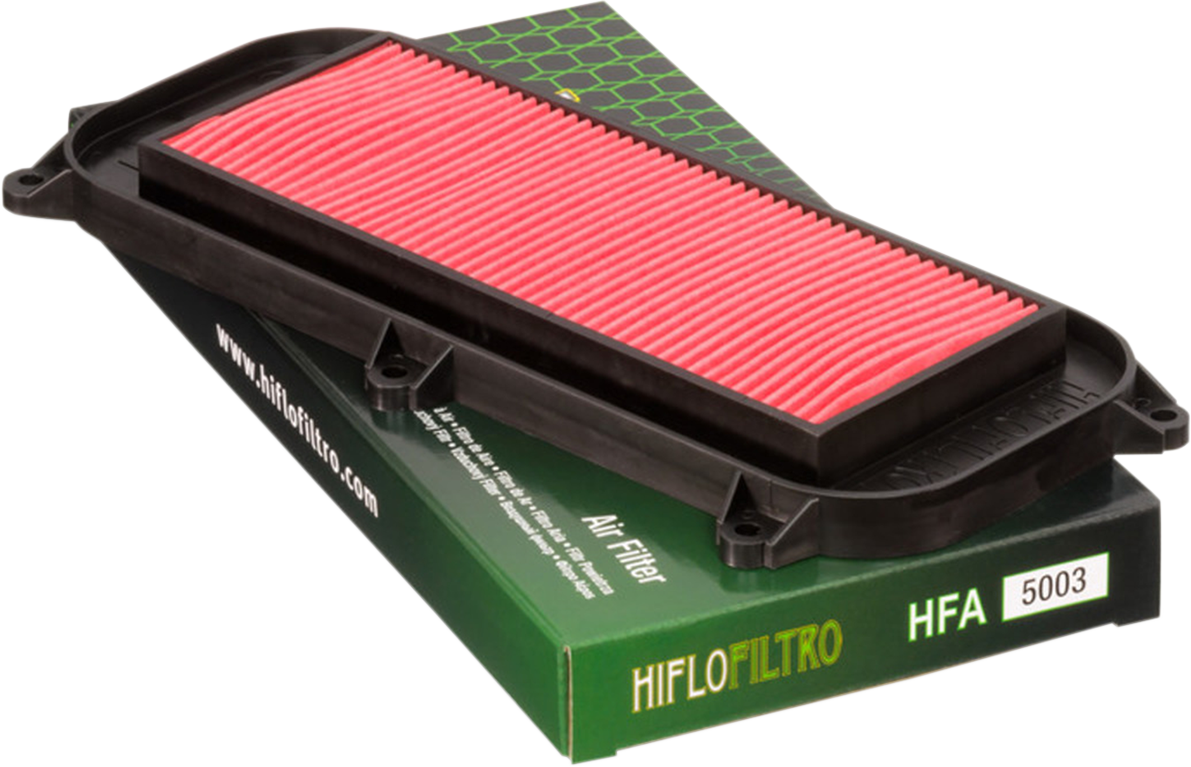 Hi Flo Air Filter HFA5001
