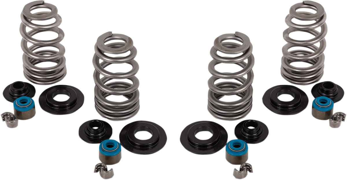 Valves and Springs