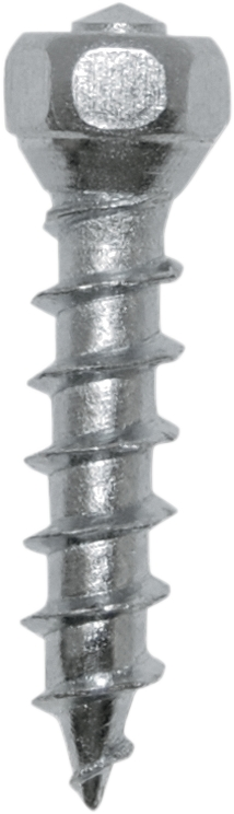 Boss Twist Tire Screws